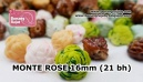 MONTE 062 ROSE 16mm (21 bh)
